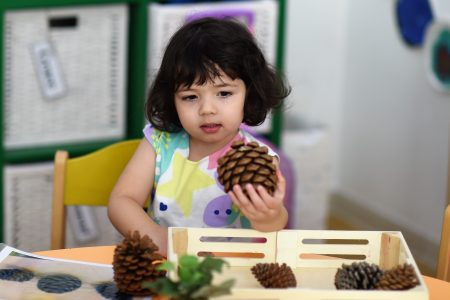 girl holding a pinecone